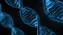 Private law funding for DNA paternity testing