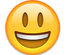 Lancashire_County_Council_v_M_and_Others__2016__EWFC_9_emoji