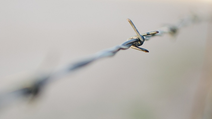 barbed_wire_2