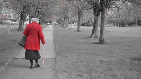 The increase in financial abuse of the elderly: what, why, how?