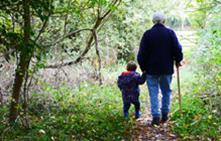 Grandparents may get more access rights under new govt plans